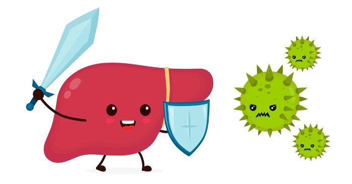 cách phòng tránh viêm gan b